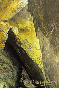 Click to see enlarged Rock Outcrop
